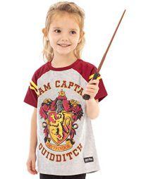 Harry Potter Quidditch Team...