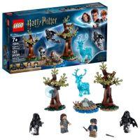 LEGO Harry Potter Expecto...