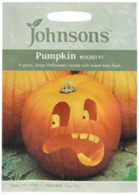 Johnsons Seed Pumpkin Rocket...